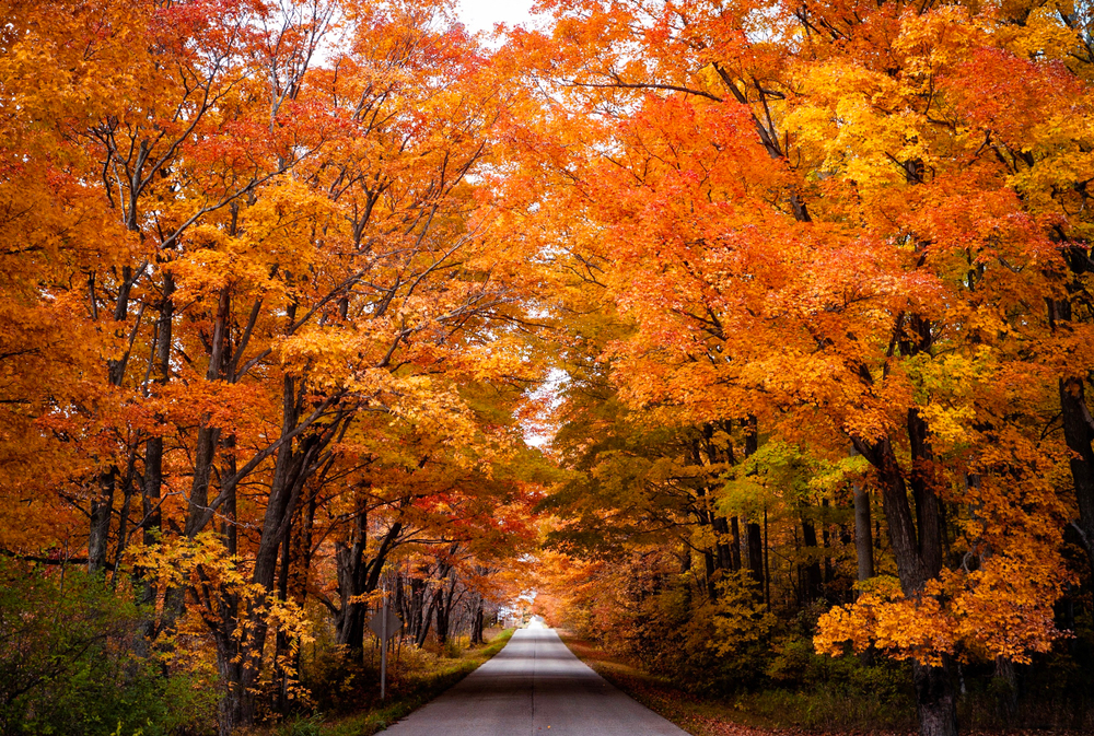 Wisconsin fall colors
